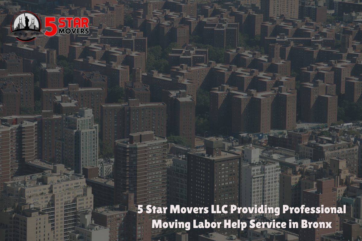 professional moving company in Bronx